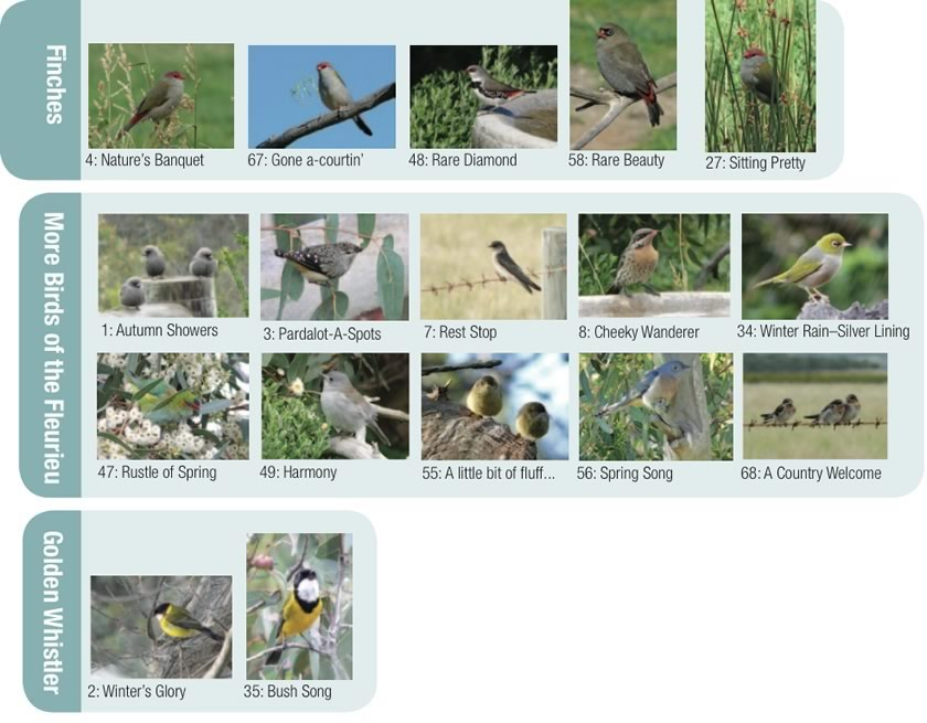 Birds & Wildlife of the Fleurieu Greeting Cards