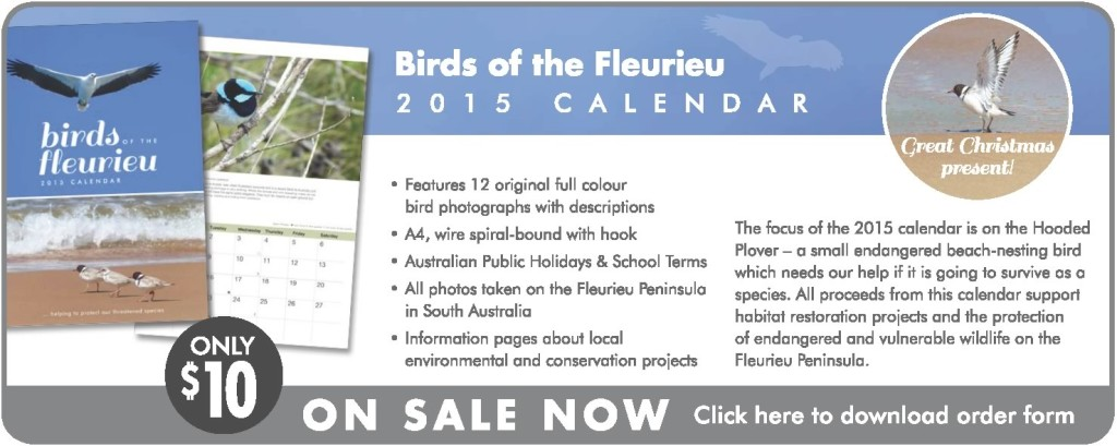2015 Calendar Banner